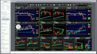 Forex Signals and  Binary Options Signals with Master Traders
