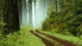 Keyshia Cole - Trust (feat.Monica) Lyrics