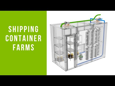 Shipping Container Farms   Growing Mushrooms In Shipping Containers