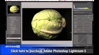 Fine Art Still Life: Ep 138: Exploring Photography with Mark Wallace
