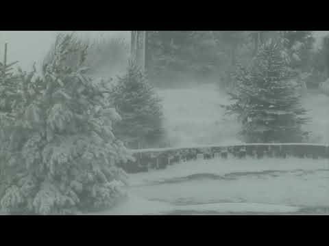 Epic Snowstorm | Howling Blizzard Sounds | Heavy Wind & Snow | Perfect Sounds For Sleep