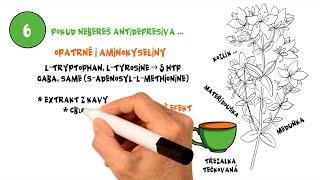 Suplementy & byliny na stres, úzkost, paniku a panické záchvaty