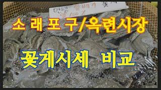 꽃게시세 비교~소래포구/동네시장