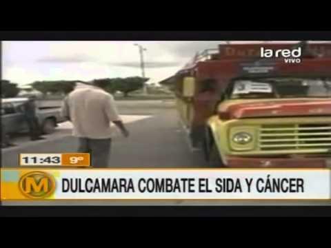Dulcamara, la planta que combate el Sida y el cáncer