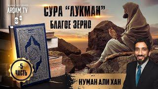 """Сура """"Лукман"""". Благое зерно. Часть 5 из 12   Нуман Али Хан (rus sub)"""