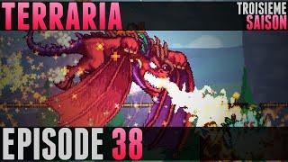 Terraria Saison 3 - #38 - Betsy, Constructions & Farming