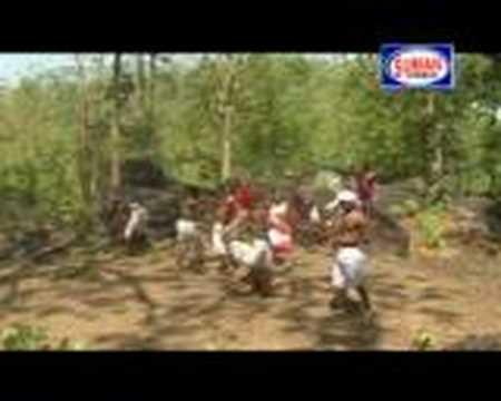 birsana gondi dance with beutiful gondi song