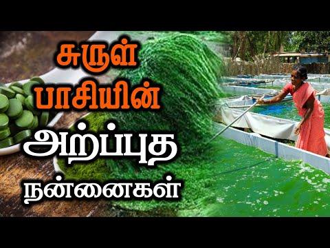 சுருள் பாசியின் அற்புத நன்மைகள் | Spirulina Health Benefits | Organic Living