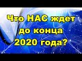 Что НАС ждет до конца 2020 года?