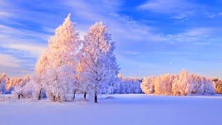 ✨ Beautiful Winter Sleep Music - Best Relaxing Piano Music - Meditation Study Spa Yoga Music #12