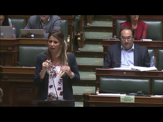 Question de la Députée Nawal Ben Hamou sur les violences au quartier Peterbos d'Anderlecht