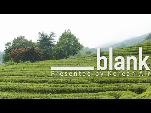 Bosung Green Tea Field, Jeolla-do // 전라도 보성 녹차밭 [blank]