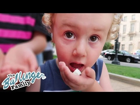 Cute Kid Trying Astronaut Ice Cream - Playlist Live 2016 - Washington DC