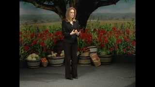 336 - Risk Without Responsibility / Healthy from the Inside Out - Rudy and Jeanie Davis