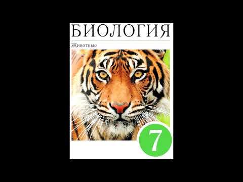 Вопрос: Какое животное не относится к отряду чешуйчатые (см.)?