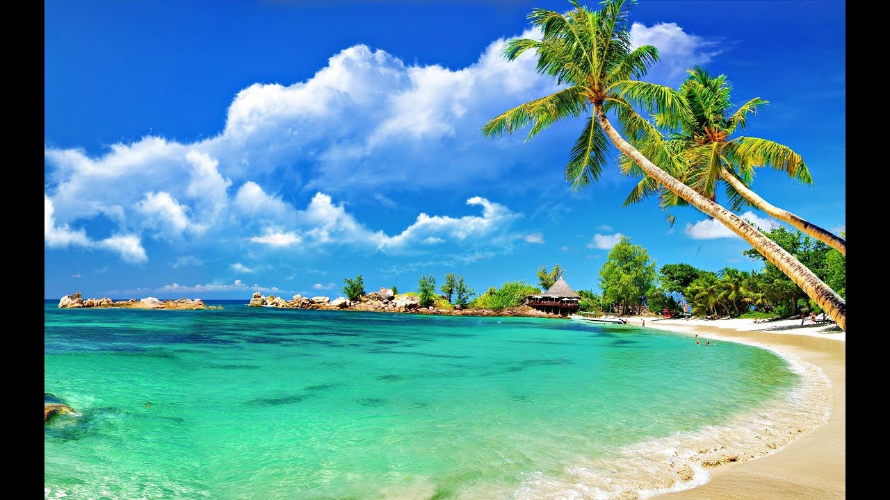 Goa Beach Hd Images: Goa Beach In 4k (INDIA)