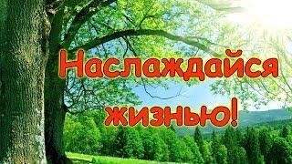 """История """"Наслаждаться жизнью"""". (рел.) Семья Бровченко."""