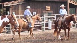 Buck Brannaman Style Guest Ranch