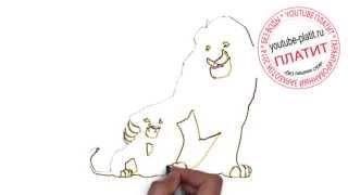 Король лев смотреть  Как быстро рисовать король дев карандашом(Король лев мультфильм. Как правильно нарисовать короля льва онлайн поэтапно. На самом деле легко и просто..., 2014-09-18T16:02:40.000Z)