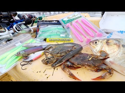 Thumbnail: LIVE BAIT vs. ARTIFICIAL LURE Fishing Challenge -- SALTWATER Edition!!!