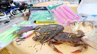 LIVE BAIT vs. ARTIFICIAL LURE Fishing Challenge -- SALTWATER Edition!!!