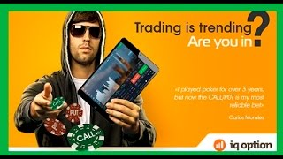 IQ Option Forex and Binary Options   TRADING   FREE Indicators and Signals