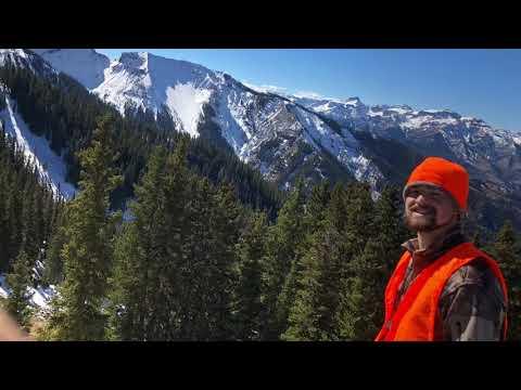 Colorado Public Land Second Rifle Elk Hunt Double!