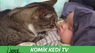 Cats and Dogs Protect Babies Complication 2015 | Funny Cats