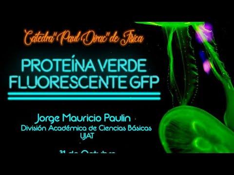 """Mauricio Paulín - """"Proteína Verde Fluorescente GFP"""""""