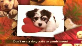 Rottweiler Puppy Training Tips | Puppy Potty Training Tips |  Potty Training Puppy Tips |Crate