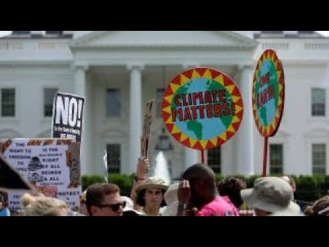 Activist: It's OK to break laws for climate change
