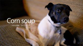 今日は定番のコーンスープ。スイートコーンと牛乳があれば簡単に作れま...