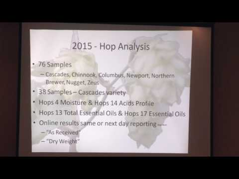 Hop and Beer Chemistry in the South Atlantic