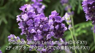 RAYNOX DCR-5320PRO 5/3/2 Diopter HD 3-in-1 Macro conversion lens_A