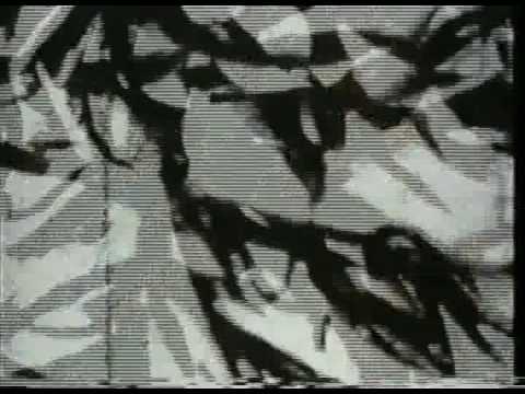 Mothlight by Stan Brakhage 1963