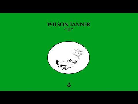 Wilson Tanner - My Gull