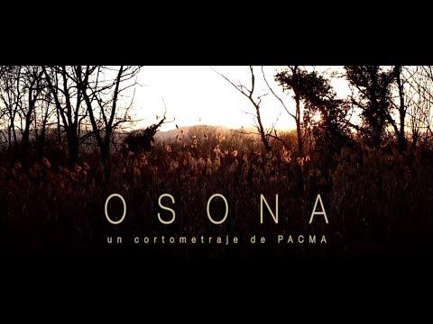 🐖 OSONA, las perversiones de la ganadería industrial