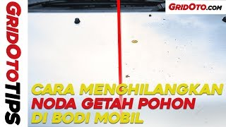 Cara Menghilangkan Noda Getah Pohon Di Bodi Mobil I How To I GridOto Tips