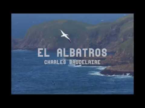 Video Poema El Albatros