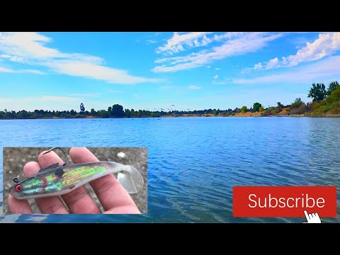 Quarry Lake Fremont California