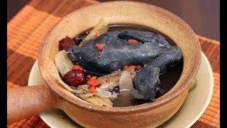 Cách làm gà ác tiềm thuốc bắc hạt sen đúng cách thơm ngon bổ dưỡng
