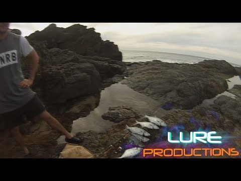 DOUBLE ISLAND POINT, SURF AND FISHING DOUBLE VIDEO - LUREPRODUCTIONS