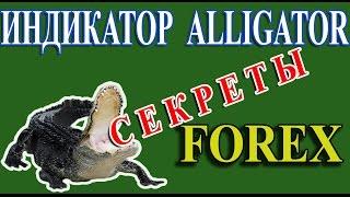 Индикатор аллигатор - как им пользоваться на практике. Сигналы аллигатора