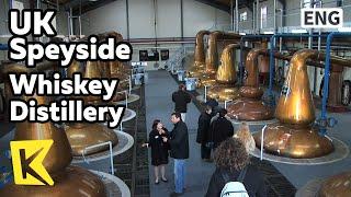 【K】UK Travel-Speyside[영국 여행-스페이사이드]전통 위스키 증류소/Whiskey Distillery/Washback/Scotch Whiskey