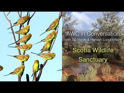 AWC in Conversation with Tali Moyle & Hamish Longbottom: Scotia Wildlife Sanctuary (S3E2)