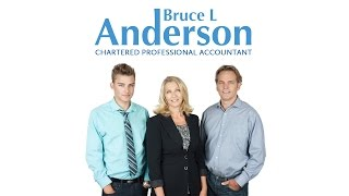 Bruce L Anderson - Chartered Professional Accountant
