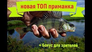 Новая ТОП приманка для ловли окуня бонус для зрителей литейщиков