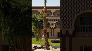 Обзор отеля Sunrise Sentido Mamlouk Palace, Хургада, 7-я часть