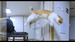 [180 3D VR] Verelife 385 탈출(escape)