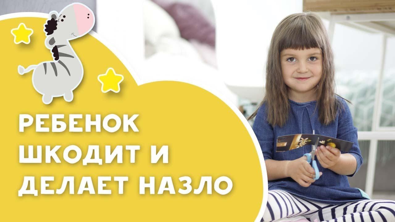 Ребенок шкодит и делает назло [Любящие мамы]